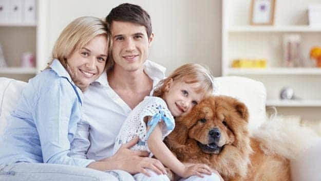 Wills & Trusts dog-young-family Direct Wills Soho